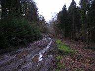 Mud created by modern timber processors