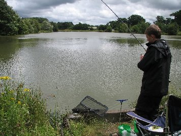 Tench ready for the net