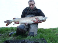 26 pound pike on the fly