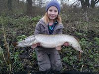 Fifteen pounds pike