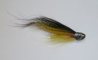 Successful Avon salmon fly