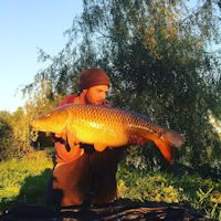 25 pound common