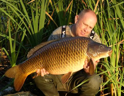 32 pound common