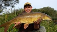 Double figured barbel