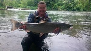 Weir pool salmon