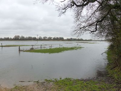 Avon valley flood