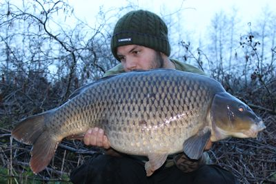 30 pound common carp