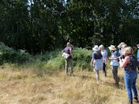 New Forest Butterfly Transect Group
